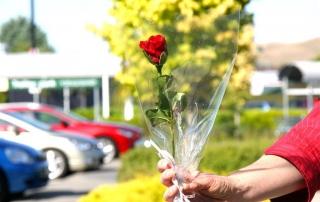 Hawkes Bay Florist